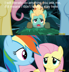 Size: 1294x1354 | Tagged: context is for the weak, discovery family logo, flutter brutter, fluttershy, pony, rainbow dash, safe, screencap, zephyr breeze