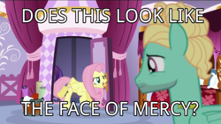 Size: 1280x720 | Tagged: caption, edit, edited screencap, face of mercy, flutter brutter, fluttershy, image macro, meme, rarity, safe, screencap, zephyr breeze