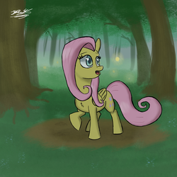Size: 1700x1700 | Tagged: safe, artist:hypno, fluttershy, forest, looking back, solo