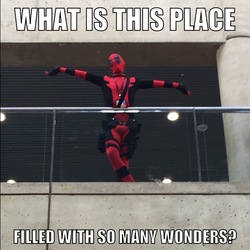 Size: 640x640 | Tagged: safe, artist:rj_para, human, bronycon, barely pony related, clothes, cosplay, costume, deadpool, image macro, irl, irl human, marvel, meme, photo, so many wonders