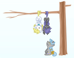 Size: 499x389 | Tagged: safe, artist:equestria-prevails, oc, oc only, oc:aster, oc:cloud skipper, oc:midnight blossom, bat pony, pegasus, pony, unicorn, cloudblossom, cute, prehensile tail, sleeping, tree, upside down