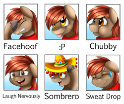 Size: 2349x1978   Tagged: safe, artist:pridark, oc, oc only, oc:winterlight, pegasus, pony, avatar, chubby, chubby cheeks, clothes, cute, dreamworks face, expression, expressions, face, face picture, facehoof, male, nervous, puffy cheeks, scarf, silly, silly face, sombrero, stallion