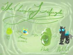 Size: 4698x3570 | Tagged: safe, artist:icarys, changeling, changeling larva, the times they are a changeling, ambiguous gender, changeling egg, cocoon, cuteling, drawn on phone, grub, larva, life cycle, lifecycle, pupa