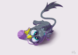 Size: 2000x1400   Tagged: source needed, safe, artist:wbp, derpibooru exclusive, gabby, griffon, the fault in our cutie marks, behaving like a cat, catbird, chickub, cute, female, gabbybetes, griffons doing cat things, hatchling, overhead view, simple background, solo, yarn, yarn ball