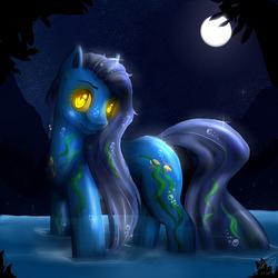 Size: 1500x1500 | Tagged: safe, artist:darkray777, original species, water pony, lake, moon, night, scenery, solo, stars