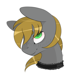 Size: 2000x2000 | Tagged: safe, artist:veincchi, oc, oc only, oc:mind sight, earth pony, pony, bust, choker, cute, male, simple background, smiling, solo, stallion, transparent background