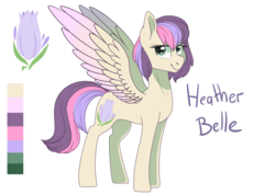 Size: 7016x4961 | Tagged: safe, artist:elskafox, oc, oc only, oc:heather belle, pony, absurd resolution, magical lesbian spawn, offspring, parent:fluttershy, parent:twilight sparkle, parents:twishy, reference sheet, simple background, solo, white background
