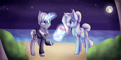 Size: 8000x4000 | Tagged: safe, artist:dragon9913, oc, oc only, pony, unicorn, absurd resolution, beach, bouquet, braid, clothes, female, grin, levitation, magic, male, mare, moon, necktie, night, night sky, ocean, raised hoof, signature, smiling, stallion, stars, suit, telekinesis, watermark