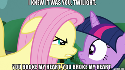 Size: 640x360 | Tagged: safe, edit, edited screencap, screencap, fluttershy, twilight sparkle, magic duel, caption, looking at you, movie reference, quote, the godfather, threat, unamused