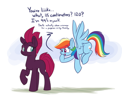 Size: 1500x1200   Tagged: safe, artist:heir-of-rick, fizzlepop berrytwist, rainbow dash, tempest shadow, pegasus, pony, unicorn, my little pony: the movie, adult blank flank, blank flank, broken horn, dialogue, duo, eye scar, eyes on the prize, female, flying, looking at each other, looking back, mare, open mouth, raised eyebrow, raised hoof, scar, simple background, size difference, tall, tempest shadow is tall