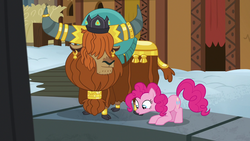 Size: 1280x720 | Tagged: cloven hooves, female, male, not asking for trouble, pinkie pie, pit, pony, prince rutherford, safe, screencap, yak, yakyakistan