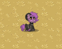 Size: 411x329 | Tagged: safe, oc, oc only, oc:~rex~, goat, pony, pony town, autumn, changed, clothes, latex, sitting, socks, striped socks, update