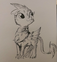 Size: 1440x1584 | Tagged: safe, artist:tjpones, greta, griffon, black and white, clothes, cute, grayscale, gretadorable, inktober, monochrome, scarf, sketch, solo, traditional art