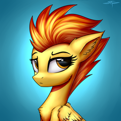 Size: 3000x3000 | Tagged: safe, artist:setharu, spitfire, pegasus, pony, blue background, bust, cheek fluff, chest fluff, ear fluff, female, high res, mare, simple background, solo