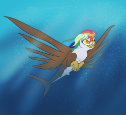 Size: 982x900 | Tagged: safe, artist:afallenwolf, oc, oc only, oc:rainbow feather, hybrid, sea pony, interspecies offspring, magical lesbian spawn, offspring, parent:gilda, parent:rainbow dash, parents:gildash, seagriffon, solo, swimming, underwater, water