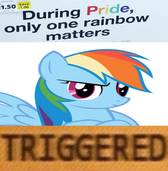 Size: 647x657 | Tagged: safe, rainbow dash, candy, crossed hooves, food, gay pride, gay pride flag, grumpy, irl, meme, op is a duck, photo, pride, skittles, solo, triggered