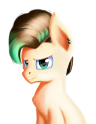 Size: 1303x1684 | Tagged: safe, artist:qbellas, pony, bust, chest fluff, male, simple background, solo, transparent background