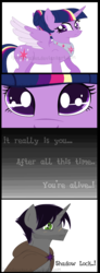 Size: 944x2556 | Tagged: safe, artist:ipandacakes, shadow lock, twilight sparkle, alicorn, pony, alternate hairstyle, cloak, clothes, comic, female, male, older, scar, shipping, story in the source, straight, twilight sparkle (alicorn), twilock