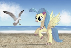 Size: 1500x1000 | Tagged: safe, artist:songbirdserenade, princess skystar, bird, classical hippogriff, hippogriff, seagull, my little pony: the movie, beach, colored pupils, cute, female, flower, flower in hair, happy, jewelry, looking at something, necklace, ocean, rearing, skyabetes, smiling, solo, spread wings, unshorn fetlocks, water, wings