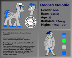 Size: 1024x819 | Tagged: artist:recordmelodie, cutie mark, fedora, hat, male, necktie, oc, oc only, oc:record melodie, pegasus, pony, reference sheet, safe, stallion, standing, wide eyes, wings