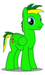 Size: 1024x1723 | Tagged: 2018 community collab, artist:didgereethebrony, derpibooru community collaboration, oc, oc:didgeree, oc only, pegasus, pony, safe, simple background, solo, transparent background