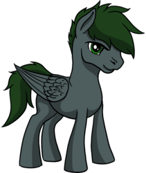 Size: 974x1153 | Tagged: safe, artist:xormak, derpibooru exclusive, oc, oc only, oc:xormak, pegasus, pony, 2018 community collab, derpibooru community collaboration, simple background, solo, transparent background