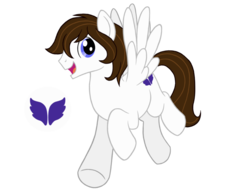 Size: 1020x783 | Tagged: 2018 community collab, artist:gypsycharm, cutie mark, derpibooru community collaboration, male, oc, oc:arcanel, oc only, pegasus, pony, safe, simple background, solo, stallion, transparent background
