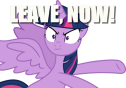 Size: 1200x847 | Tagged: safe, twilight sparkle, alicorn, once upon a zeppelin, female, gtfo, image macro, meme, simple background, solo, twilight sparkle (alicorn), unamused, white background