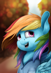 Size: 1024x1448 | Tagged: artist:xormak, autumn, clothes, female, hoodie, mare, path, pegasus, pony, rainbow dash, safe, solo, tree