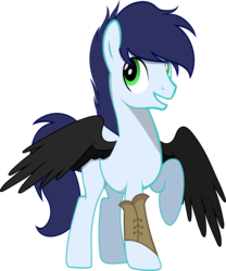 Size: 5516x6614 | Tagged: 2018 community collab, absurd res, artist:edgybatpone, derpibooru community collaboration, looking back, male, oc, oc only, pegasus, pony, raised hoof, safe, simple background, solo, transparent background, unnamed oc, vector