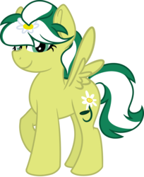 Size: 974x1196 | Tagged: safe, artist:binkyt11, derpibooru exclusive, oc, oc only, oc:marguerite daisy, pegasus, pony, 2018 community collab, derpibooru community collaboration, female, looking at you, mare, simple background, solo, transparent background