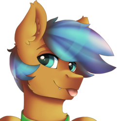 Size: 2097x2160 | Tagged: safe, artist:ritter, oc, oc only, oc:bluemist, bat pony, pony, avatar, bat pony oc, collar, cute, fangs, happy, male, simple background, solo, stallion, tongue out, transparent background