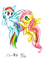 Size: 904x1280 | Tagged: safe, artist:remyroez, fluttershy, rainbow dash, duo, eye contact, floating, flying, looking at each other, open mouth, signature, simple background, spread wings, white background