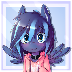 Size: 650x650 | Tagged: safe, artist:hoodie, oc, oc only, pegasus, pony, semi-anthro, bust, clothes, collar, ear fluff, hoodie, looking at you, piercing, portrait, solo