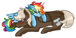 Size: 900x450 | Tagged: safe, artist:artistcoolpony, artist:kikirdcz, dumbbell, rainbow dash, pony, blushing, dumbdash, male, pony pillow, prone, shipping, simple background, sleeping, straight, transparent background, zzz