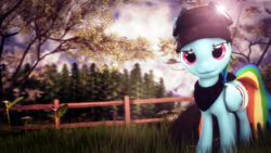 Size: 4000x2250 | Tagged: safe, artist:redaceofspades, rainbow dash, pegasus, pony, 3d, bandage, fence, goggles, hood, lens flare, looking at you, poster, solo, source filmmaker, tree