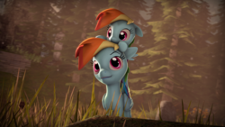 Size: 3840x2160 | Tagged: safe, artist:imafutureguitarhero, rainbow dash, pony, 3d, 4k, cute, dashabetes, double rainbow, duality, duo, filly, filly rainbow dash, forest, grass, hnnng, pony hat, self ponidox, source filmmaker, tall grass, time paradox