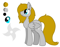 Size: 1655x1284 | Tagged: artist:anxiouslilnerd, cute, cutie mark, oc, oc:nameless, oc only, pegasus, pony, reference sheet, safe, simple background, solo, transparent background, vector