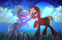 Size: 5950x3850 | Tagged: safe, artist:kawaiipony2, cloudchaser, oc, oc:neostrike, pegasus, pony, :p, absurd resolution, blush sticker, blushing, boop, canon x oc, cloud, colored pupils, commission, eye contact, female, fluffy, grass, lidded eyes, looking at each other, male, moon, neochaser, night, open mouth, raised hoof, rearing, shipping, sky, smiling, stallion, stars, straight, tongue out, water