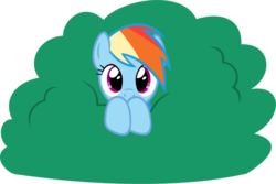 Size: 1024x686 | Tagged: artist:zacatron94, bush, cute, dashabetes, pegasus, pony, rainbow dash, safe, simple background, solo, .svg available, transparent background, vector