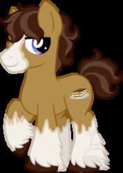 Size: 499x700 | Tagged: safe, artist:tambelon, oc, oc only, oc:tiramisu, earth pony, pony, male, solo, stallion, unshorn fetlocks, watermark