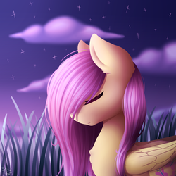 Size: 2000x2000 | Tagged: safe, artist:spirit-dude, fluttershy, pegasus, pony, bust, eyes closed, female, folded wings, grass, grass field, hair over one eye, mare, night, portrait, profile, scenery, solo, stars, twilight (astronomy)