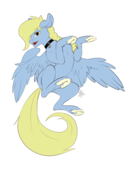 Size: 2893x3720 | Tagged: artist:storyofthemy, belly, braid, charm, collar, derpibooru exclusive, frog (hoof), looking at you, oc, oc only, oc:windswept skies, on back, open mouth, pegasus, pony, safe, simple background, solo, spread wings, transparent background, underhoof, unshorn fetlocks, wings