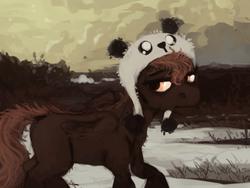 Size: 800x600 | Tagged: safe, artist:celestiawept, scootaloo, panda, pegasus, pony, female, folded wings, hat, lidded eyes, looking away, looking back, looking sideways, raised hoof, snow, solo