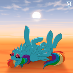 Size: 1000x1000 | Tagged: artist:margony, beach, chest fluff, cute, female, fluffy, mare, ocean, pegasus, pony, rainbow dash, safe, sand, solo, tongue out