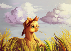 Size: 1166x834 | Tagged: safe, artist:28gooddays, applejack, pony, female, field, grass, hay stalk, scenery, solo, straw in mouth