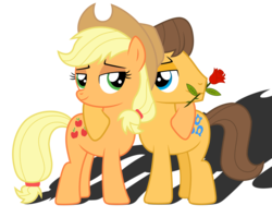 Size: 2361x1884 | Tagged: safe, artist:meandmyideas, applejack, caramel, earth pony, pony, bedroom eyes, carajack, couple, cuddling, female, flower, male, rose, shipping, simple background, snuggling, straight, transparent background, vector