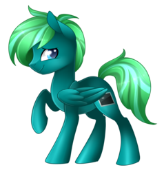 Size: 1468x1544 | Tagged: safe, artist:scarlet-spectrum, oc, oc only, oc:variable, pegasus, pony, colored pupils, commission, looking back, male, raised hoof, simple background, smiling, stallion, transparent background