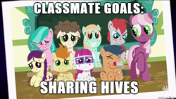 Size: 610x343   Tagged: safe, screencap, aquamarine, boysenberry, cheerilee, first base, gallop j. fry, little red, peach fuzz, super funk, train tracks (character), pony, a flurry of emotions, angry, chalkboard, concerned, crying, horsey hives, image macro, meme, picture, ponyville schoolhouse, sad, smiling