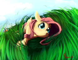 Size: 1400x1080 | Tagged: safe, artist:miokomata, fluttershy, rainbow dash, pegasus, pony, crying, cute, female, folded wings, grass, grass field, imminent snuggles, looking up, lying down, mare, on side, sad, sadorable, sky, solo focus, teary eyes, unaware, when you see it